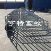 大型猪场安装母猪定位栏养猪设备寻<高端品牌>厂家发货