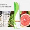 白芸豆提取物 膳食纤维乳清蛋白粉固体饮料代加工OEM